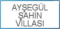 AYSEGUL-SAHIN