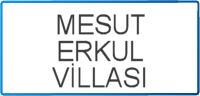 MESUT-ERKUL
